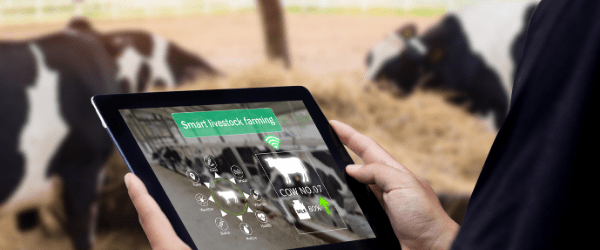 Platform to connect buyers and sellers in agriculture industry